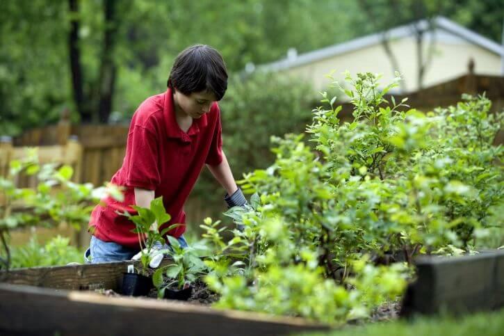 hobby del giardinaggio