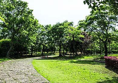 giardino-con-viale.jpg