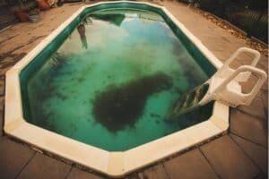 Alghe nella piscina