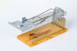 Trappola per topi a gabbia