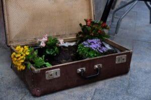 Valigia con fiori